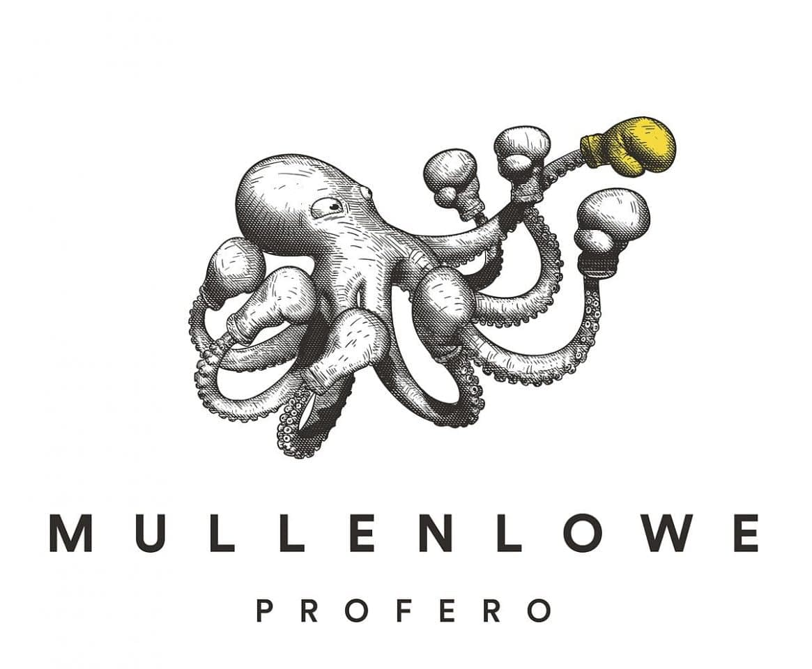 Featured Image for MullenLowe Profero Case Studies –Photo by Glenn Carstens-Peters on Unsplash