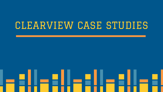 ClearView Business Solutions Case Studies