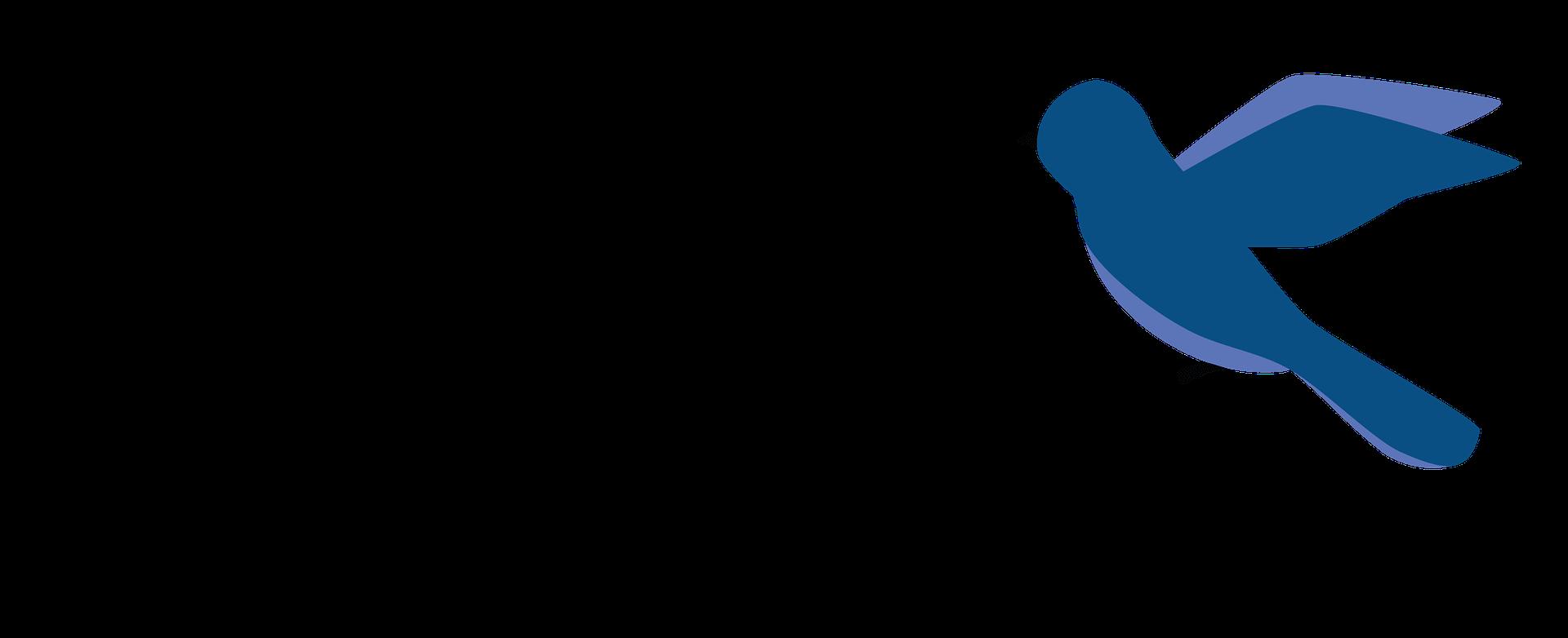 Horizontal Copy Martin logo blue